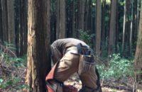 【自宅に使う丸太伐採見学ツアー】